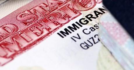 U.S. Visa Options